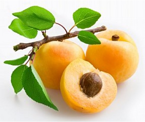 Apricot Candle Fragrance